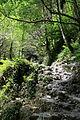 FR64 Gorges de Kakouetta54.JPG