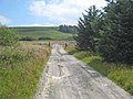 Farm road from Carreg-y-Big - geograph.org.uk - 899324.jpg