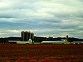 Farm with Five Silos - panoramio (1).jpg