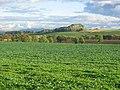Farmland, Ochiltree. - geograph.org.uk - 65436.jpg