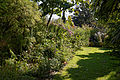 Feeringbury Manor flower herbaceous shrub border, Feering Essex England 7.jpg