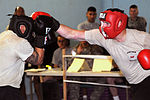 Fight Night at Joint Security Station Loyalty DVIDS181267.jpg