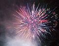 Fireworks (5582362612) (2).jpg
