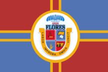 플로레스 주
