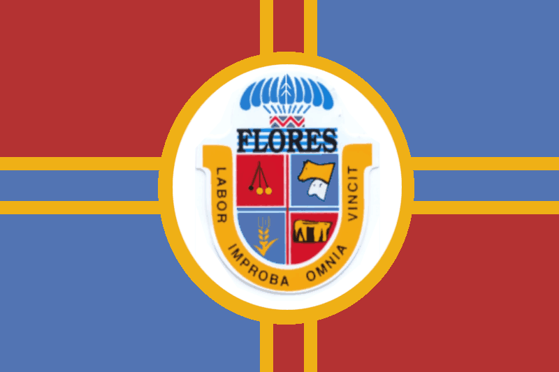 Flag of Flores Department