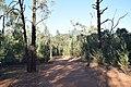 Flinders Ranges SA 5434, Australia - panoramio (110).jpg