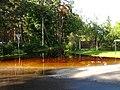 Flood 2010 - panoramio (9).jpg