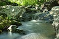 Flowing stream.jpg