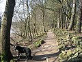 Footpath, Lower Rivington Reservoir - geograph.org.uk - 376990.jpg