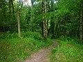 Footpath, Top Carpark, Colby Lodge - National Trust Gardens - geograph.org.uk - 1370050.jpg