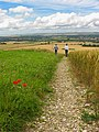 Footpath access to Pewsey White Horse - geograph.org.uk - 506513.jpg