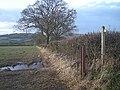 Footpath and field edge - geograph.org.uk - 1074382.jpg