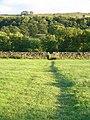 Footpath south of Askrigg - geograph.org.uk - 449635.jpg