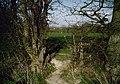 Footpath to Park Road - geograph.org.uk - 1238344.jpg