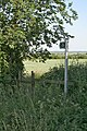 Footpath towards the Trent Valley - geograph.org.uk - 839620.jpg
