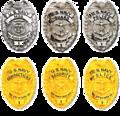 Former Navy Law Enforcement Badges.png