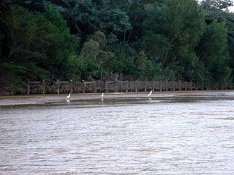 Ichilo Province - Image: Foto wikipedia rio pirai
