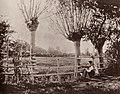 Französischer Photograph - Landschaft bei Bocage (Zeno Fotografie).jpg
