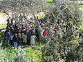 Free tour, Kerameikos, Ancient Graveyard, Athens, Greece (4451465787).jpg