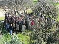 Free tour, Kerameikos, Ancient Graveyard, Athens, Greece (4451465787).jpg