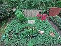 Friedhof heerstraße berlin 2018-05-12 (97).jpg