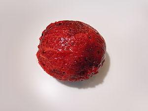 Pitaya - A peeled fruit of the Stenocereus queretaroensis species