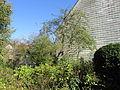 Garten Haus Hövener Brilon 2.jpg