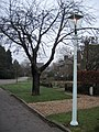 Gas Street Lamp - geograph.org.uk - 647735.jpg