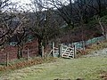 Gate and Stile, Cwm Rheidol - geograph.org.uk - 215228.jpg