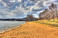 Gfp-yellowstone-lake-shoreline.jpg