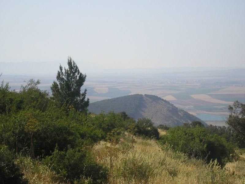 Gilboa ridge