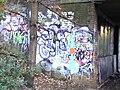 Graffiti - Crouch End Hill Bridge - Parkland Walk - geograph.org.uk - 1619957.jpg