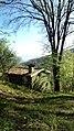 Grande Rovere - panoramio (1).jpg