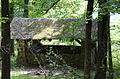 Gray Spring Recreation Area-Forest Service Road 1003 Historic District.JPG