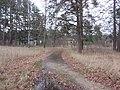 Grigiškės, Lithuania - panoramio (159).jpg