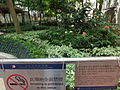 HK Sheung Wan 急庇利街 Cleverly Street Sitting-Out Area sign No Smoking Sept-2013.JPG