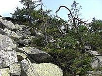 Haberstein granite blocks.jpg