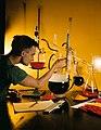 Halliburton Lab. (8380738295).jpg