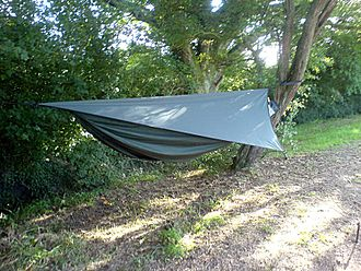 Hammock camping - A hammock suspended between two trees, complete with tarpaulin