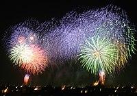 I fuochi d'artificio sono uno dei festeggiamenti classici del Capodanno