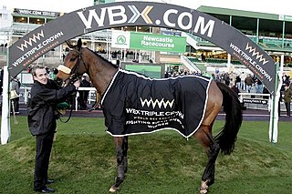 Harchibald French-bred Thoroughbred racehorse
