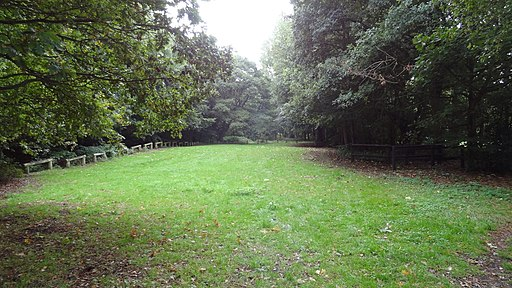 Havering Country Park 5