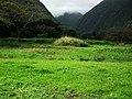 Hawaii Big Island Kona Hilo 217 (7025125871).jpg