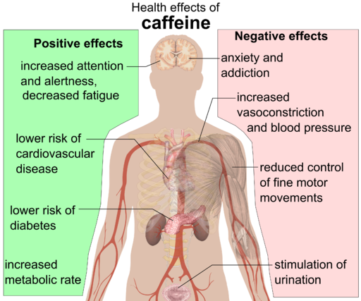 Health effects of caffeine