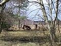 Heathland V Ponies.jpg
