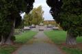 Herbstein Friedhof Denkmal f.png