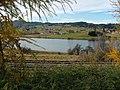 Herzmannser Weiher = Unterer Inselweiher - panoramio.jpg