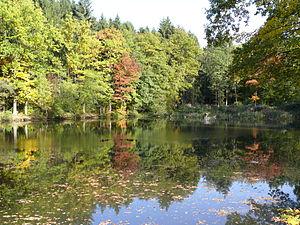 Nümbrecht - Witches' ponds