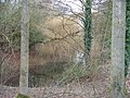 Hidden lake - geograph.org.uk - 1730708.jpg