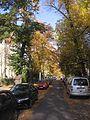Hielscherstraße-Wilhelmsruh.JPG
